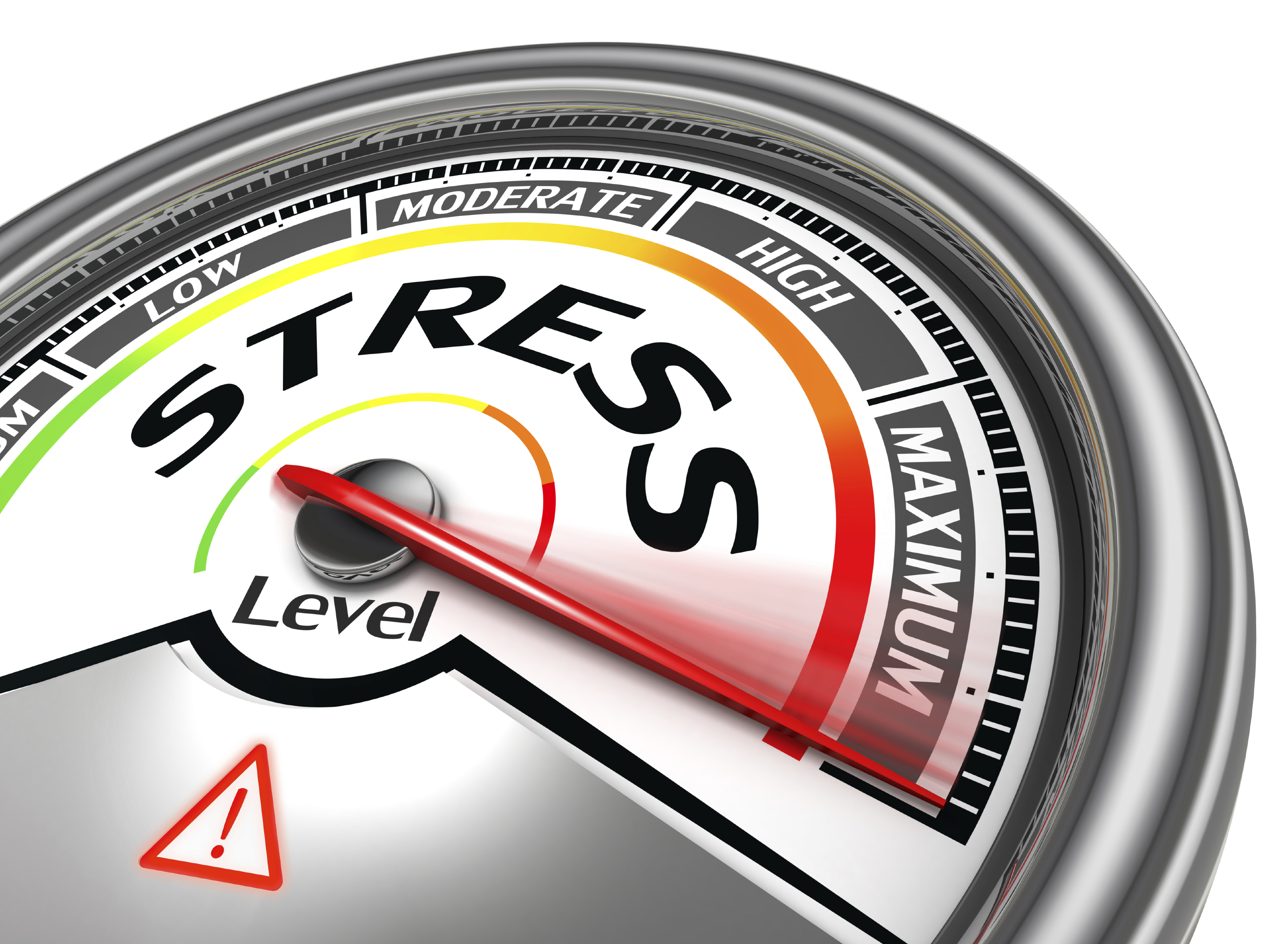 2019 STRESS